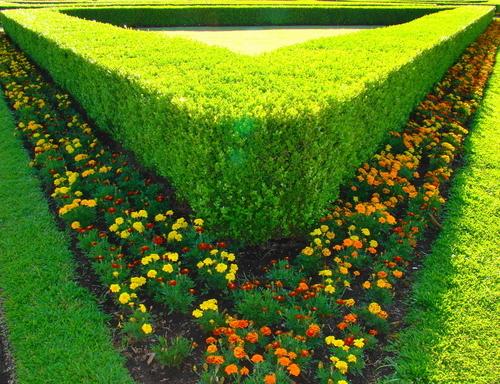 Gartenbau – eine Nische für Webshops